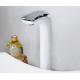 Misturador Monocomando para Lavatório Alto - Perflex